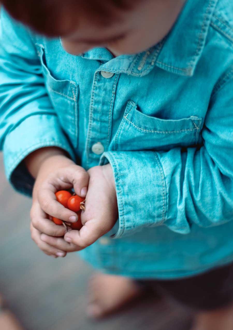 Las frutas y verduras más y menos contaminadas